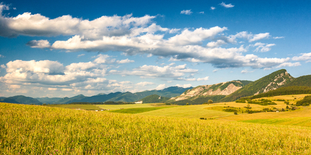 Fields and meadows in rural landscape with mountains at spring period. Stock Photo