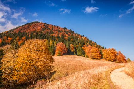 Autumn landscape in The Mala Fatra national park, Slovakia, Europe.