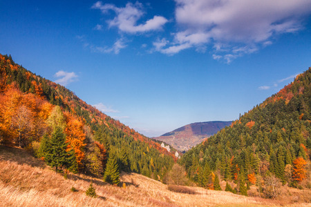 Autumn landscape in The Mala Fatra national park, Slovakia, Europe.