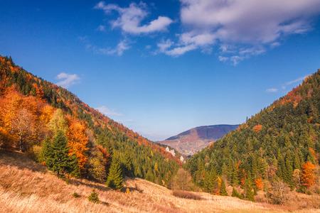 Paesaggio autunnale nel parco nazionale di Mala Fatra, Slovacchia, Europa.