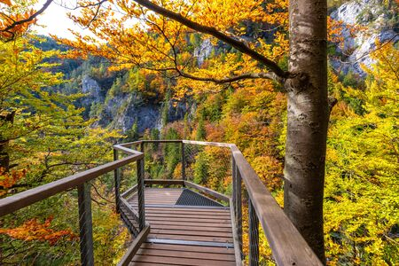Landscape in autumn day. Lookout built over the gorge on hiking trail through Kvacianska valley, Slovakia, Europe.