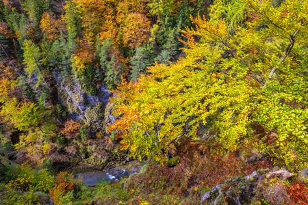 Mountain landscape in autumn day. View into the gorge on hiking trail through Kvacianska valley, Slovakia, Europe.