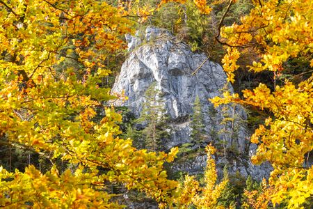 A rock in the shape of a male face in an autumn forest. Kvacianska Valley in Liptov region of Slovakia, Europe.