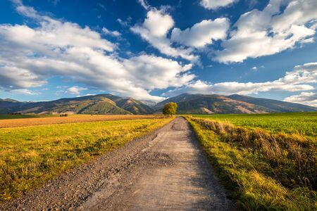 Landscape with a road leading to the mountains in the morning light at autumn. The area of Liptov with The Western Tatras mountains, Slovakia, Europe. Stockfoto