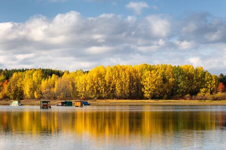 Trees in autumn colors at the shore of The Liptovska Mara dam, the area of Liptov in Slovakia, Europe.