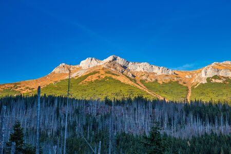 Belianske Tatras mountain range in autumn season, Slovakia, Europe.