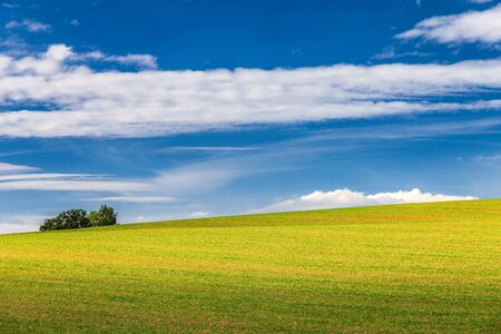 Rural landscape, field with blue sky and clouds in the background at a sunny summer day. Rajec Valley area, Slovakia, Europe.
