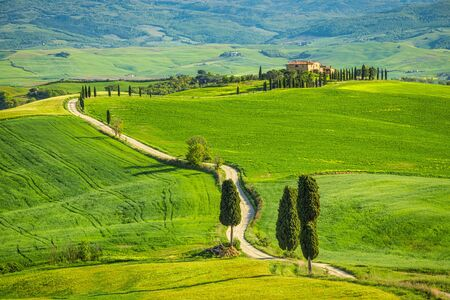 Landscape with a cypresses lined path near Pienza town. Val d'Orcia in Tuscany, Italy, Europe.