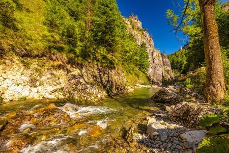 Wild stream through mountainous landscape with rocky gorge on a sunny morning. Vratna valley in Mala Fatra National Park, Slovakia, Europe.