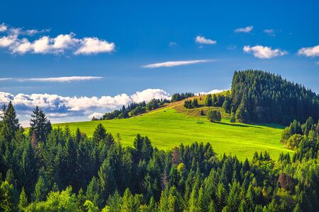 Forested mountainous landscape on a sunny morning. The  Mala Fatra National Park, Slovakia, Europe.