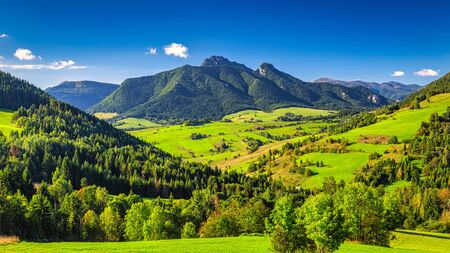 Mountainous landscape with rocky peaks on background at a sunny morning. The  Mala Fatra National Park, Slovakia, Europe.