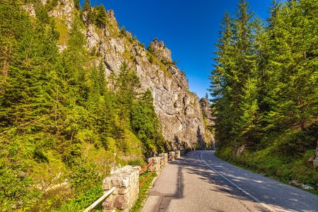 Road through mountainous landscape with rocky gorge on a sunny morning. Vratna valley in Mala Fatra national park, Slovakia, Europe.
