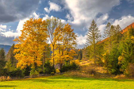 Autumn rural landscape in a mountain valley. The Vratna valley in Mala Fatra national park, Slovakia, Europe. Stockfoto