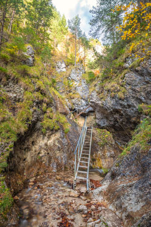 Ladder on a hiking trail in a rocky gorge. The Vratna valley in Mala Fatra national park, Slovakia, Europe. Stockfoto