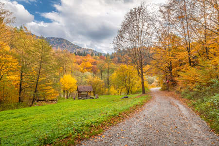 A road through autumn rural landscape with colorful trees.