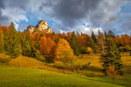 Mountain valley landscape in autumn. The Vratna valley in Mala Fatra national park, Slovakia, Europe.