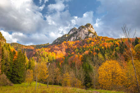 Mountain landscape with colorful forests in autumn. The Vratna valley in Mala Fatra national park, Slovakia, Europe.
