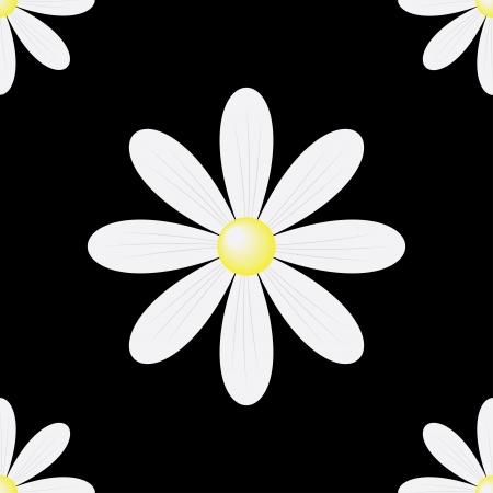 daisy seamless background on a black photo