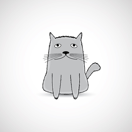 cute fat kitten