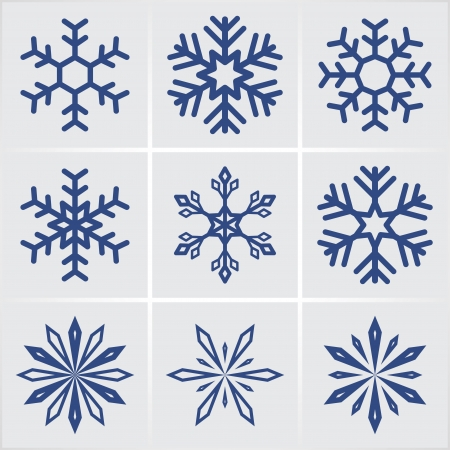 snowflakes. vector icons set. Vector