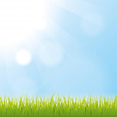 gras. natuur achtergrond. vector. eps10