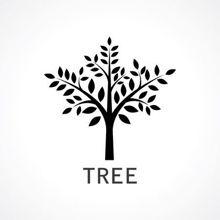 treetop: symbol of tree.