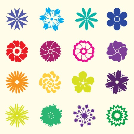 colored flowers on white background Vector