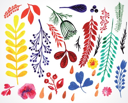 sprigs: vector sprigs and leaves painted watercolor hand drawn design elements