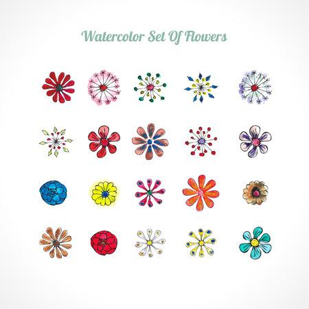 watercolor flowers vector set Vector