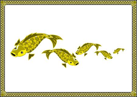 crowd tail: goldfish frame