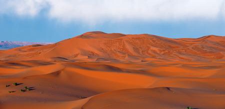 merzouga: Merzouga dunes