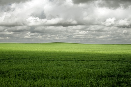 fields in spring under a stormy sky