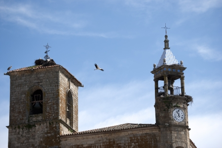 Storks in the tower of a church in Trujillo, Spain Stock Photo