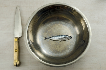 Minnow in metal bowl with a knife next photo