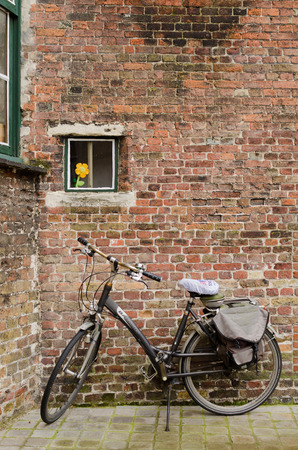 artificial flower: BRUGES, BELGIUM - OCTOBER, 25: Bike next to a brick wall in which there is a window with an artificial flower, on October25, 2013, in Bruges, Belgium