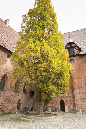 teutonic: Interni in grande castello gotico in Europa - Malbork. Castello dei Cavalieri Teutonici. Mondiale Heritage List dell'UNESCO. Editoriali