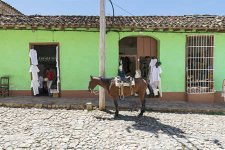field work: TRINIDAD, CUBA - MAY 8, 2014: A horse on streets of small colonial town Trinidad, where people still use horses and oxen for transportation and field work.