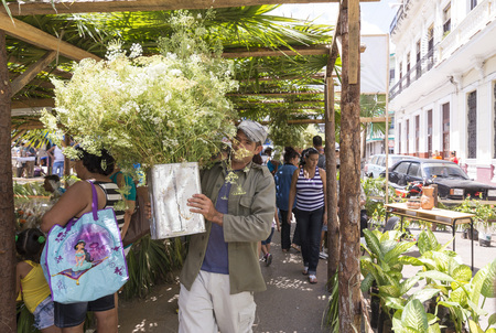lively: MATANZAS, CUBA - MAY 10, 2014: Lively street market of flowers and plants the day before Mothers Day. Mothers Day is celebrated in Cuba the second Sunday of May Editorial