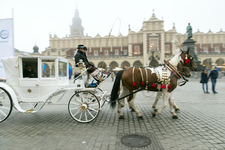 working animal: KRAKOW, POLAND - OCTOBER 26, 2014: Horse carriage on Krakows Main Market Square. In the background is a historic town hall called Ratusz and Cloth Hall (Sukiennice).