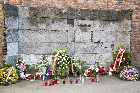 death camp: AUSCHWITZ, POLAND - OCTOBER 25, 2014: The memorial of death wall in the concentration camp of Auschwitz  in Oswiecim, Poland.