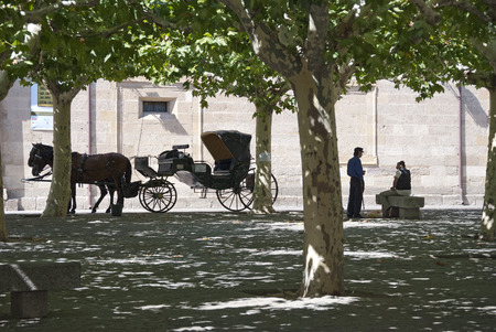 horse and carriage: ZAMORA, SPAIN - SEPTEMBER 8, 2009: The driver of a horse carriage talk to a colleague while wait customers on September 8, 2009, in Zamora, Spain