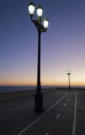 bike lane: Waterfront at night with bike lane