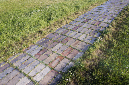 watered: Decorative brick road in a garden at dawn