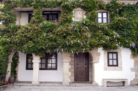 old town house: old town house facade with many hanging lilac flowers