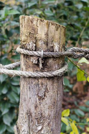 roped off: Focus on a wooden pole with a rope attached. Vegetation background