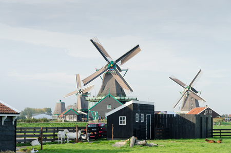 schans: Traditional Dutch windmills at Zaanse Schans,
