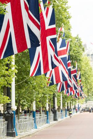 labor union: flag of united kingdom with blue sky background around backingham palace