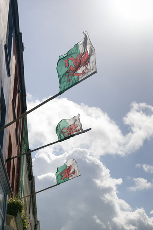 bandera de gales: Welsh flag featuring a red dragon.