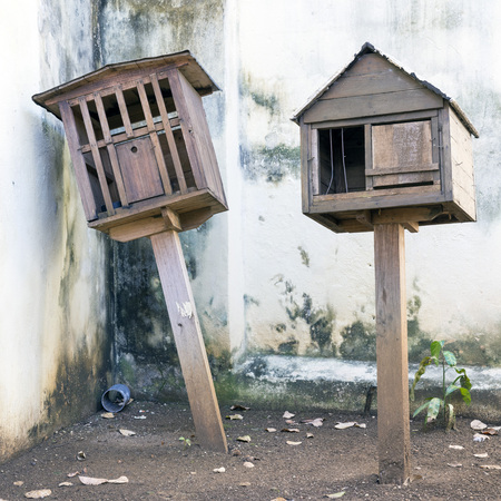 house pet: Two wooden house pet