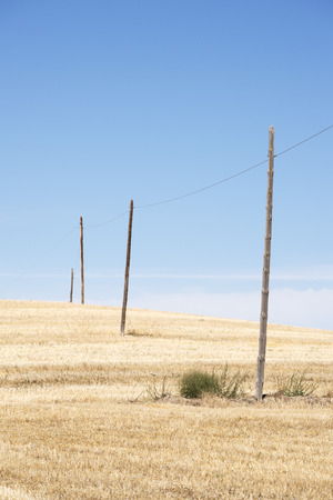 telephone poles: Telephone poles diminishing in a dry landscape of rural Spain